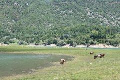 lago_del_turano_18.jpg