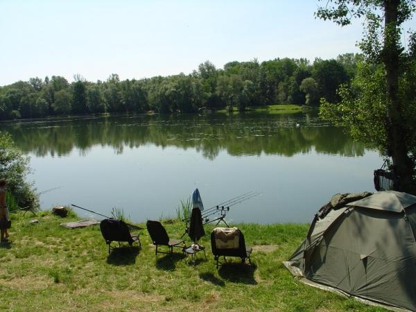 Liebmannsee web fishing angeln in sterreich fischen for Teich mit fischen